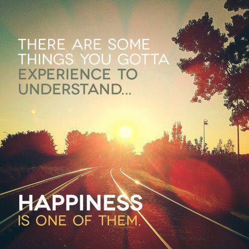 there-are-some-things-you-gotta-experience-to-understand-happiness-is-one-of-them